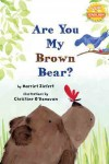 Are You my Brown Bear?